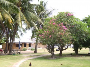 Typische Bambushütte auf Pamilacan