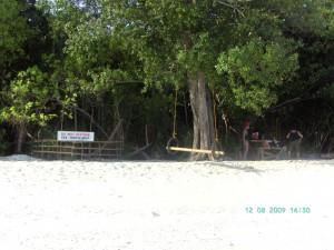 Schildkrötennest auf Mantigue Island