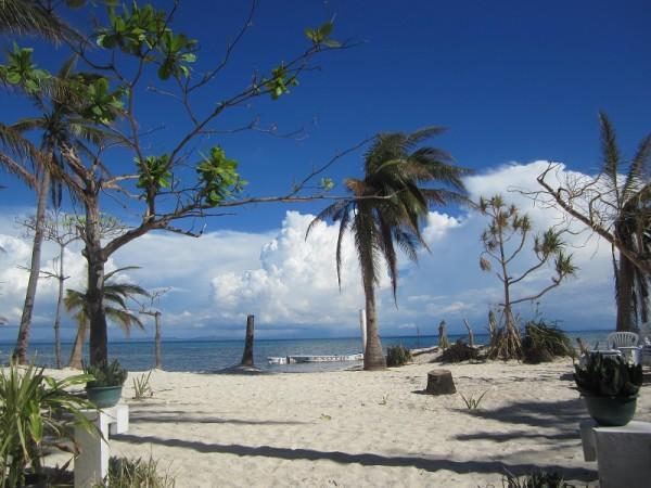 Exotic Island Dive Resort Malapascua