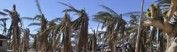 Malapascua Island nach Taifun Yolanda