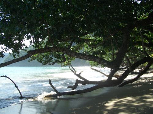 Sabang gehört zum Unesco-Weltkulturerbe; es liegt noch im Stadtbereich von Puerto Princes auf Palawan