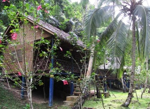Bambushütte mit Dormbetten in Bohol