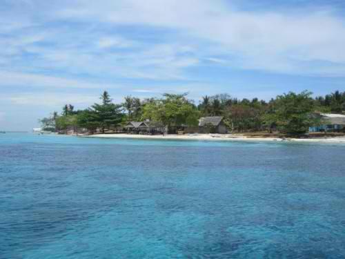 Tauchen und Schnorcheln rund um Pamilacan Island.
