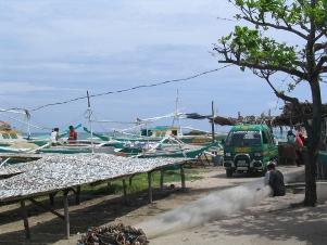 Fischerhafen in Madredijos auf Bantayan Islan