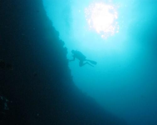 Wall Dive Apo