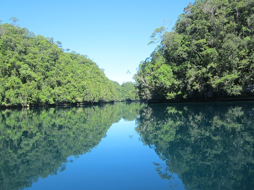In Socorro, Bucas Grande, wird vor allem Surigaonon gesprochen.