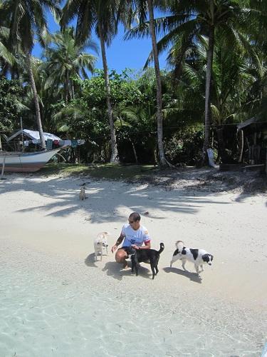 Die Strandhunde warteten schon und begrüßten uns im Inselparadies