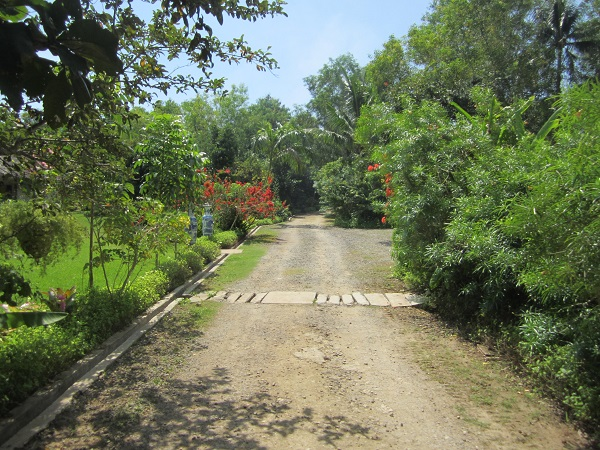 Tarsier Botanika garden