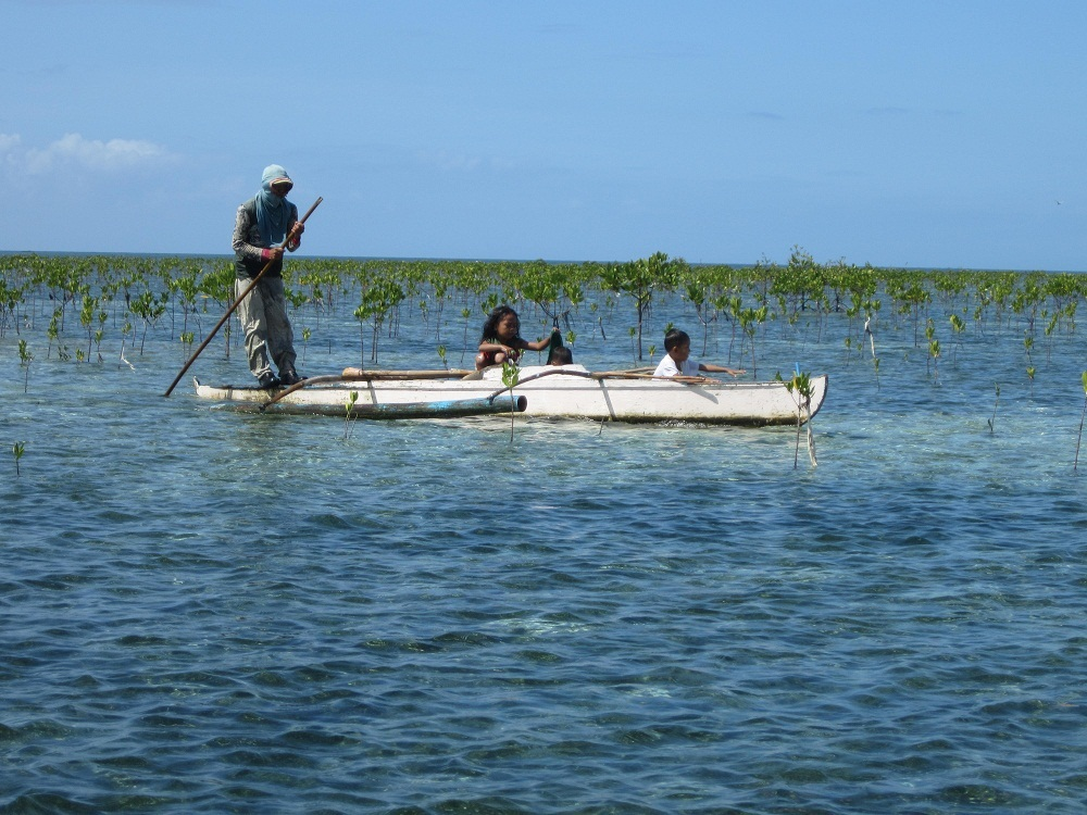 In den Mangroven vor Cordova tummeln sich vor allem morgens viele Fischer mit ihren Familien