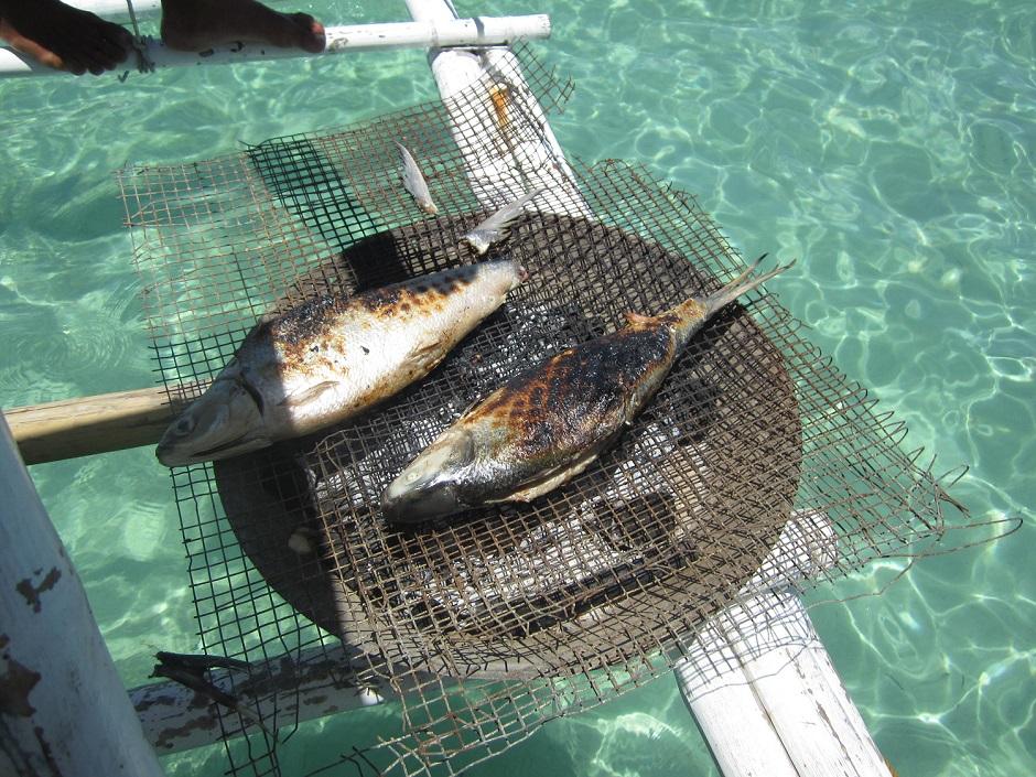 Frischer Fisch kann direkt auf dem Boot gegrillt werden und schmeckt gerade nach dem Schnorcheln besonders gut
