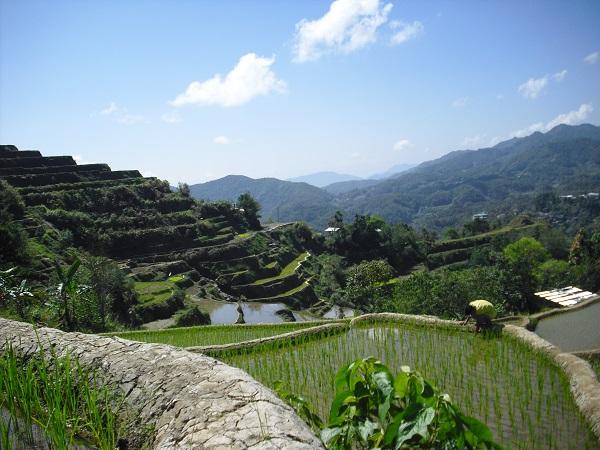 Reisterrassen im Norden von Luzon