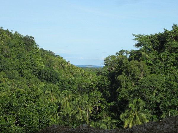 Guyam Island (Hamburger Island)