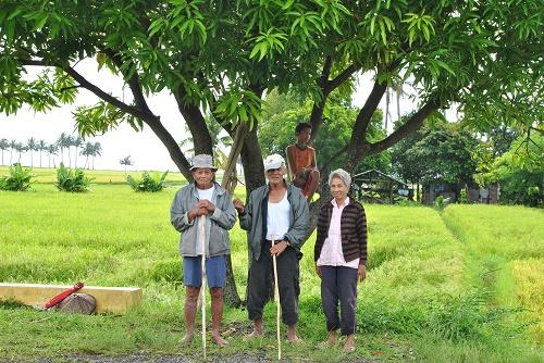 Alt wie ein Baum werden nur wenige Philippinos. 69 Jahre ist das durchschnittliche Lebenserwartung.