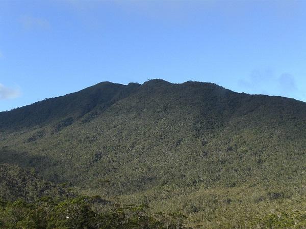 Mount Hamiguitan Range Wildlife Sanctuary: Schatz der Natur auf den Philippinen