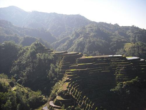 """Das """"achte Weltwunder"""" so wie die """"rice terraces"""" auch genannt werden, ist in Gefahr!"""