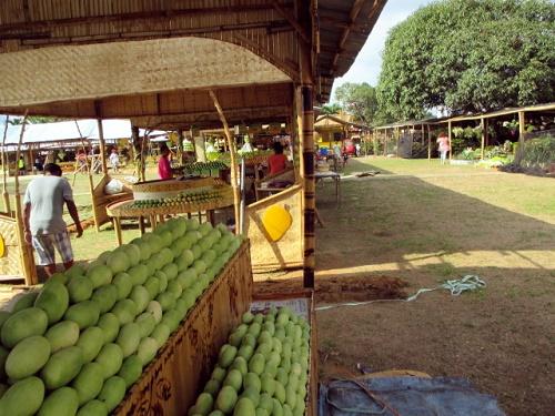 Guimaras – die Mangoinsel