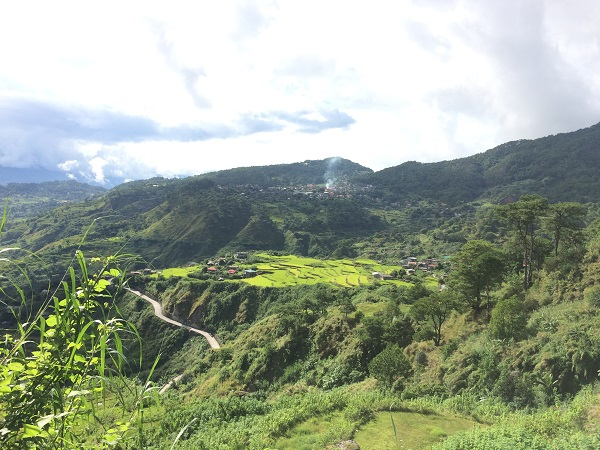 "Kleine ""rice terrasses"" in Bontoc, Luzon"