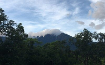 Sibuyan Island: Mount Guiting Guiting & Galapagos Asiens