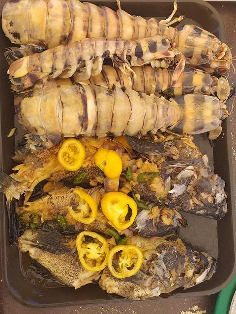 Hummer und Fisch, zubereitet