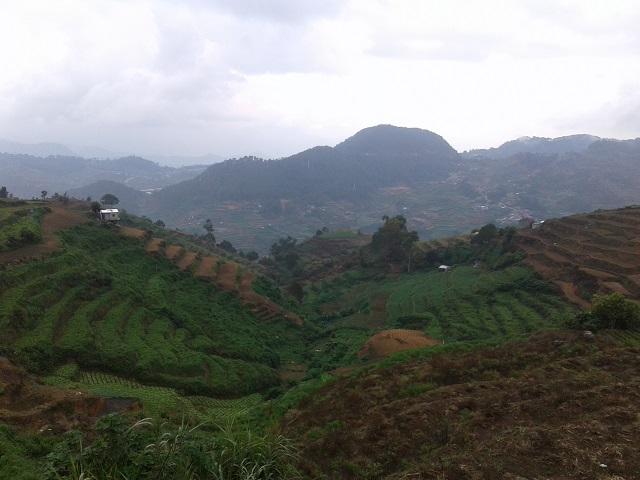Gemüseanbaugebiete in den Philippinischen Kordilleren in Nordluzon