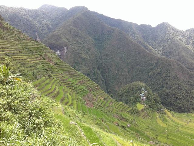 Die wunderschönen, zum UNESCO-Welterbe gehörenden Reisterrassen in Batad, Banaue